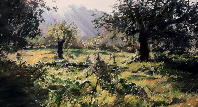 paisatge / landschaft / Susanne Wind / Tomeu Estelrich
